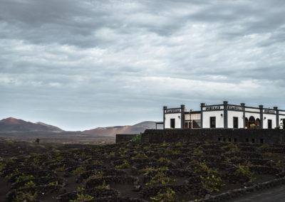 La Geria | Lanzarote